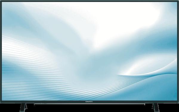Grundig LED Fernsehgerät 65 GUB 8866